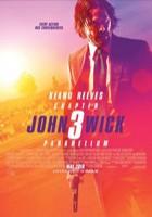 JohnWick:Chapter3Parabellum